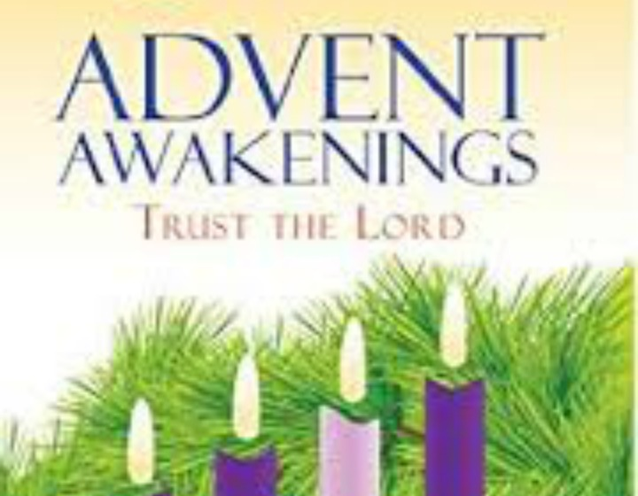Advent Awakening Bible Study